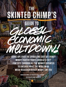 Guide to the Global Economic Meltdown